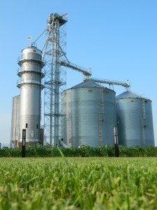 Instead of barns, our grain dryer and bins tower over our fields and home.
