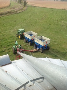 from top of grain bin