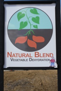 Natural Blend