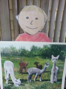 Figure 15. Aggie is holding a painting of our alpaca boys.