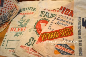 Seed Bag Cover