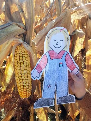 Flat Aggie & Corn