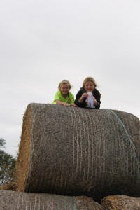 hanging with the farm kids
